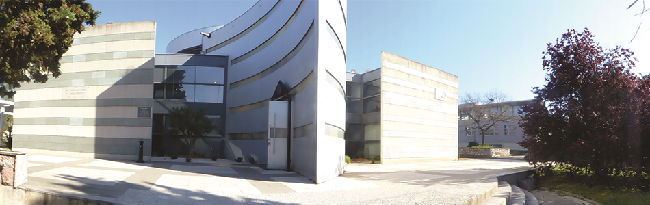 蒙彼利埃管理学院